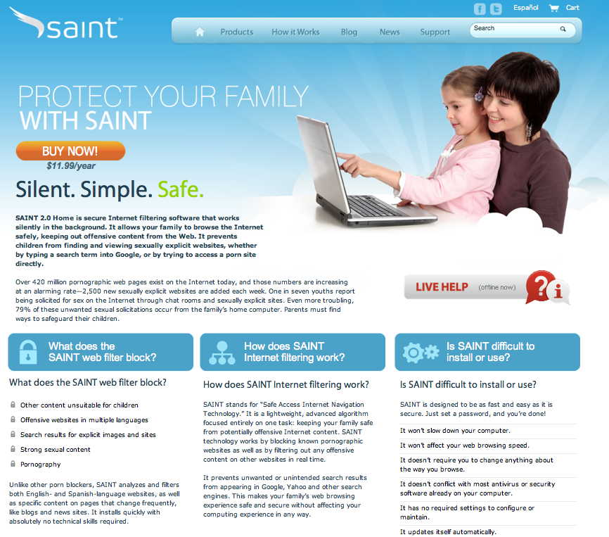 Saint — Internet Filtering Software